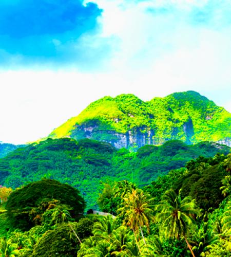 Voyager à Tahiti avec une agence de voyage