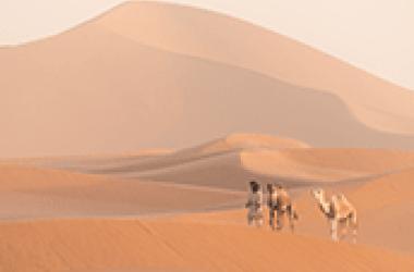 Les avantages de partir en vacances avec une agence de voyages